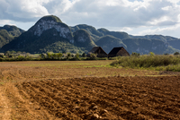 Ploughed field with mountain landscape, Vinales, Cuba 11015316754| 写真素材・ストックフォト・画像・イラスト素材|アマナイメージズ
