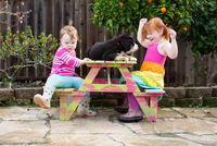 Two young sisters sitting on garden bench with pet dog 11015317089| 写真素材・ストックフォト・画像・イラスト素材|アマナイメージズ