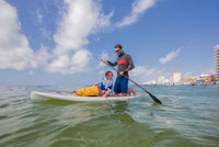 Father and daughter paddle boarding in the Gulf of Mexico, Florida, USA 11015331711| 写真素材・ストックフォト・画像・イラスト素材|アマナイメージズ