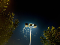 Insect light trails in front of floodlight at night 11015331802| 写真素材・ストックフォト・画像・イラスト素材|アマナイメージズ
