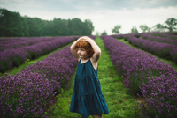 Toddler between rows of lavender, Campbellcroft, Canada 11015334840| 写真素材・ストックフォト・画像・イラスト素材|アマナイメージズ