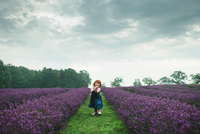 Toddler between rows of lavender, Campbellcroft, Canada 11015334841| 写真素材・ストックフォト・画像・イラスト素材|アマナイメージズ