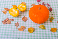 Still life of pumpkin and chopped pumpkin with autumn leaves, close-up 11015343692| 写真素材・ストックフォト・画像・イラスト素材|アマナイメージズ