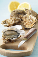 Close-up of Oysters and Oyster Knife on Cutting Board on Blu 11030036535| 写真素材・ストックフォト・画像・イラスト素材|アマナイメージズ