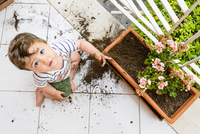 Baby Boy Playing in Flower Box on Balcony