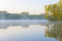 Lake with mist and Trees in Early Morning Light, Early Spring, Hanau, Erlensee, Germany 11030048775| 写真素材・ストックフォト・画像・イラスト素材|アマナイメージズ