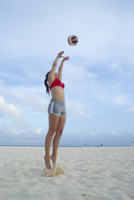 Woman Playing Beach Volleyball, Reef Playacar Resort and Spa, Playa del Carmen, Mexico 11030049767| 写真素材・ストックフォト・画像・イラスト素材|アマナイメージズ