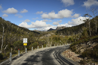 Road through Cradle Mountain-Lake St Clair National Park, UNESCO World Heritage Area, Tasmania, Australia 11030050081| 写真素材・ストックフォト・画像・イラスト素材|アマナイメージズ