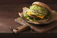 A vegan hamburger with a soya patty, vegan cheese, cucumber and clover sprouts 11047048925| 写真素材・ストックフォト・画像・イラスト素材|アマナイメージズ
