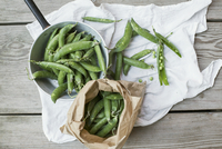 Pea pods in a sack and in a saucepan on a cloth 11047049347| 写真素材・ストックフォト・画像・イラスト素材|アマナイメージズ