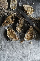 Unopened oysters on a stone background 11047059311| 写真素材・ストックフォト・画像・イラスト素材|アマナイメージズ
