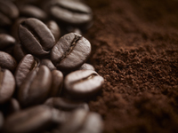 Close up of whole coffee beans and ground coffee 11055019431| 写真素材・ストックフォト・画像・イラスト素材|アマナイメージズ
