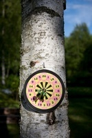 Dart board on tree trunk