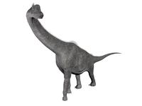Brachiosaurus dinosaur, white background. 11079021856| 写真素材・ストックフォト・画像・イラスト素材|アマナイメージズ