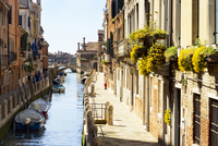 Flowers hanging along sunny architectural buildings along canal in Venice Italy 11080019165| 写真素材・ストックフォト・画像・イラスト素材|アマナイメージズ