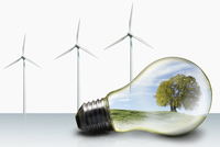 Green Energy Concept With Nature Landscape In Lightbulb 11080019963| 写真素材・ストックフォト・画像・イラスト素材|アマナイメージズ