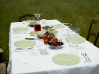 Dinner table in park