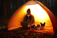 A woman sits in a tent at night with her dogs and looks at her laptop 11082002300| 写真素材・ストックフォト・画像・イラスト素材|アマナイメージズ