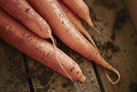 Still life close up fresh, organic, healthy, rustic, dirty orange carrots