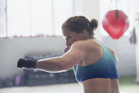 Determined female boxer shadowboxing in gym 11086036304| 写真素材・ストックフォト・画像・イラスト素材|アマナイメージズ