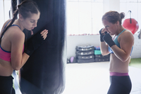 Female boxers boxing at punching bag in gym 11086036336| 写真素材・ストックフォト・画像・イラスト素材|アマナイメージズ