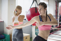Focused young female boxer stretching, twisting in gym 11086036342| 写真素材・ストックフォト・画像・イラスト素材|アマナイメージズ