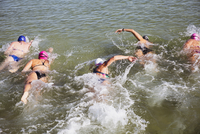 Overhead view female open water swimmers swimming in sunny ocean 11086037145| 写真素材・ストックフォト・画像・イラスト素材|アマナイメージズ