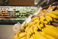 Close up of bananas in produce section of grocery store 11086045485| 写真素材・ストックフォト・画像・イラスト素材|アマナイメージズ