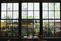 Interior view of a restaurant in Manhattan's West Village, window overlooking a garden. 11093006638| 写真素材・ストックフォト・画像・イラスト素材|アマナイメージズ