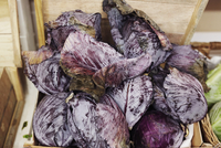 Red cabbages piled up in a wooden crate. 11093014152| 写真素材・ストックフォト・画像・イラスト素材|アマナイメージズ