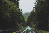 Car driving on a rural road through a forest in the rain. 11093015212| 写真素材・ストックフォト・画像・イラスト素材|アマナイメージズ
