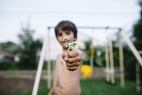 Close up of bare chested young boy standing in garden, holding clover. 11093017749| 写真素材・ストックフォト・画像・イラスト素材|アマナイメージズ