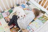 A puppy and a baby sleeping on a patchwork quilt in a cot. 11093018706| 写真素材・ストックフォト・画像・イラスト素材|アマナイメージズ