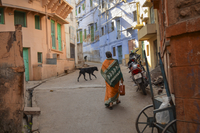 Urban street in Rajasthan, India, rear view of woman and dog walking. 11093020244| 写真素材・ストックフォト・画像・イラスト素材|アマナイメージズ