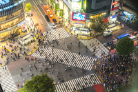 High angle view of urban street lined with illuminated buildings, pedestrians walking on pedestrian crossings. 11093023170| 写真素材・ストックフォト・画像・イラスト素材|アマナイメージズ