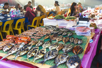 High angle view of grilled fish on a table at a food market restaurant, people sitting and eating at tables in the background. 11093023393| 写真素材・ストックフォト・画像・イラスト素材|アマナイメージズ