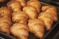 Close up of tray of freshly baked croissants in a bakery. 11093023850| 写真素材・ストックフォト・画像・イラスト素材|アマナイメージズ