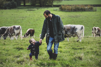 Man and young boy walking on a pasture, with English Longhorn cows in the background.