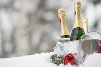 Bucket of champagne in snow with Christmas ornament 11096002463| 写真素材・ストックフォト・画像・イラスト素材|アマナイメージズ