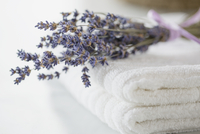 Folded white towels with sprig of lavender. 11096021450| 写真素材・ストックフォト・画像・イラスト素材|アマナイメージズ