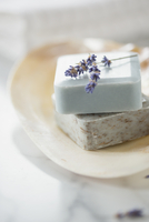 Close-up of guest soaps in soap dish with lavender sprig. 11096024220| 写真素材・ストックフォト・画像・イラスト素材|アマナイメージズ