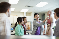 Students learning anatomy in college science lab 11096034586| 写真素材・ストックフォト・画像・イラスト素材|アマナイメージズ
