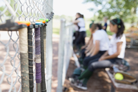 Softball bats hanging on fence near bench