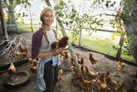 Portrait smiling young female farmer holding chicken in chicken coop 11096056130| 写真素材・ストックフォト・画像・イラスト素材|アマナイメージズ