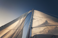 Low angle view of sails and mast of yacht 11100031015| 写真素材・ストックフォト・画像・イラスト素材|アマナイメージズ
