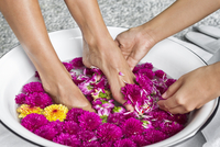 Cropped image of massage therapist giving foot bath to woman in beauty spa