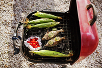 Overhead view of fish and corn with cherry tomatoes on barbecue grill 11100040840| 写真素材・ストックフォト・画像・イラスト素材|アマナイメージズ
