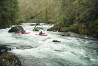 Kayakers paddling through river in forest 11100046105| 写真素材・ストックフォト・画像・イラスト素材|アマナイメージズ