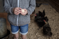 Midsection of girl holding egg in poultry farm 11100066491| 写真素材・ストックフォト・画像・イラスト素材|アマナイメージズ