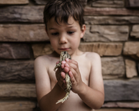 Playful boy holding frog while standing against wall 11100071507| 写真素材・ストックフォト・画像・イラスト素材|アマナイメージズ